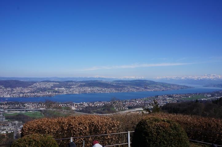Blick auf den Zürichsee vom Uetliberg